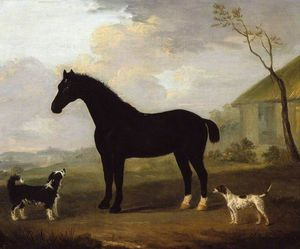 A Black Horse With Two Dogs