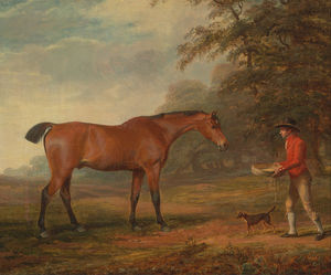 A Bay Horse Approached By A Stable-lad With Food And A Halter