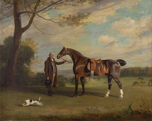 The Earl Of Shrewsbury's Groom Holding A Hunter - Google Art Project