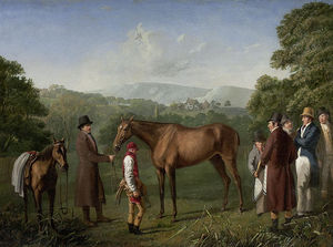A Bay Racehorse Held By A Trainer In An Extensive Landscape