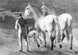 Stable Boy With Two Grey Horses And A Dog