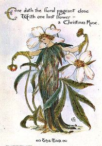 イラスト示します A 妖精 として クリスマス ローズ