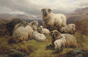 Le pâturage des moutons Par Un Loch