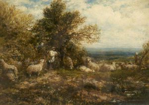 Sheep At Rest, Minding The Flock