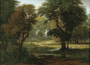 Овцы и Лошади  пастбище  Под  Деревья