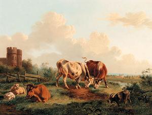Крупный рогатый скот козел  а также  овцы  около     башня