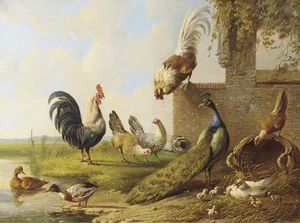 Poultry And A Peacock By A Ruin -