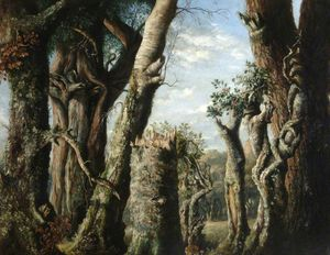 Oak, Holly And Other Trees
