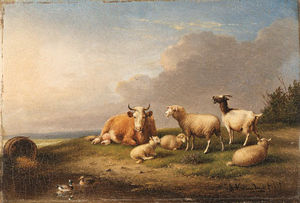 Sheep And A Cow Grazing On A Hillside