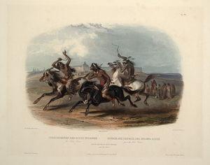 スーインディアンの競馬