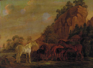 Mares And Foals By A Rocky Outcro