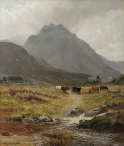Trefan - Highland Cattle In A Glen