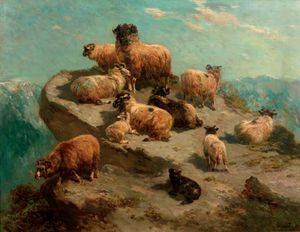 Mountain Sheep On A Cliff's Edge