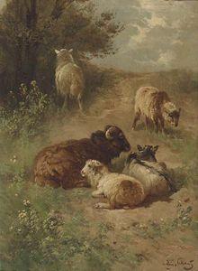 Sheep On A Sandy Track