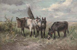 The Fisherman's Donkeys