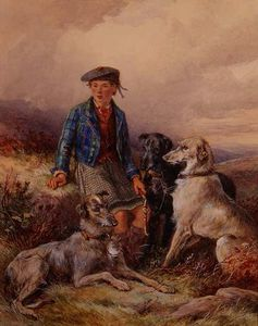Scottish Boy With Wolfhounds In A Highland