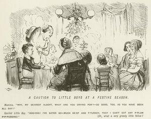 A Caution To Little Boys At A Festive Season