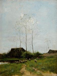 シェパードのある風景 そして 羊