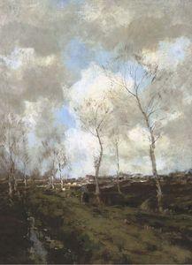 Heideweg In Drenthe - Birches Along A Country Path