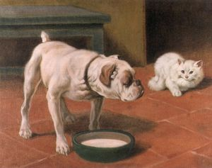 The Bulldog And The Cat