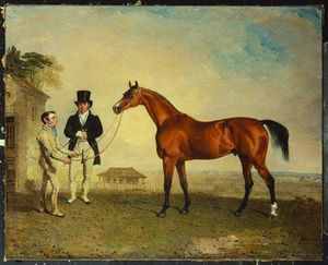 'skiff', A Bay Racehorse Held By A Groom On