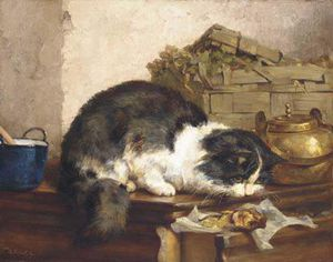 A Cat In The Kitchen
