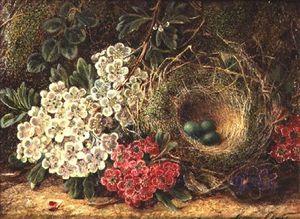 натюрморт с Птичье гнездо