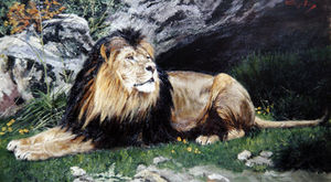 A Barbary Or Atlas Lion
