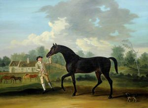 'goldfinder', A Bay Hunter With A Groom And Other Horses
