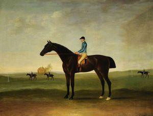 'trentham', A Bay Racehorse