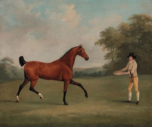 A Bay Hunter With A Groom, In A Wooded Landscape; And A Saddled Bay Hunter Held By A Groom, In A Wooded Landscape
