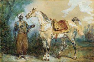 Taking A Mameluke Harnessed Horse Profile Left