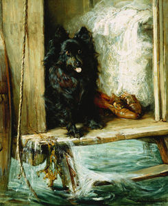 Left In Charge - A Black Pomerain On The Steps