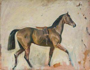 A Bay Horse