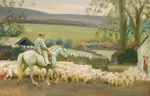 Приведение домой Овцы , Withypool , Эксмур