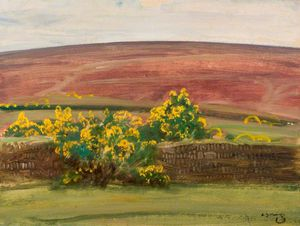 Wall And Gorse On Exmoor