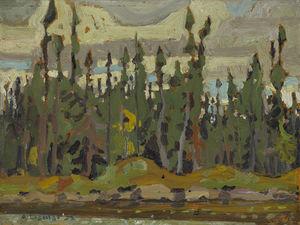 Spruce, Sand Lake, Algoma