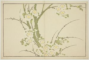 Flowers, From The Picture Book Of Realistic Paintings Of Hokusai