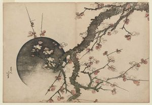 Plum Blossoms And Moon