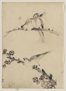 Three Birds Perched On Branches, One With Blossoms