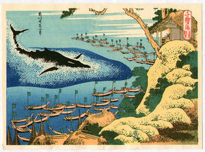 Whale Hunting At Goto - Chie No Umi