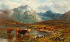 скотч Крупный рогатый скот а Туман