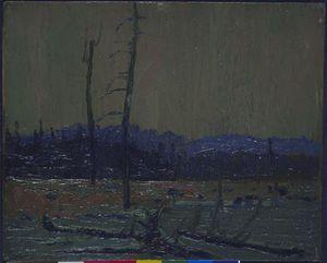 Tamarack Swamp, Dawn