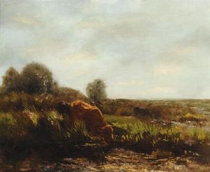 Cows In The Summer Sun