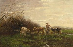 Tending The Cows
