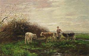 Watering The Cows