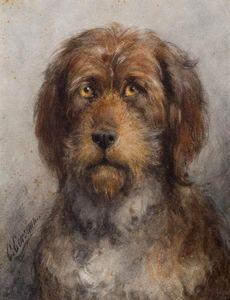 Portrait Of A Bouvier De Flandres Dog From The Le Fevre De Montigny Family