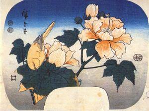 yellow bird and cotton rose