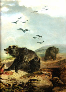 Hunting the Grizzly Bear