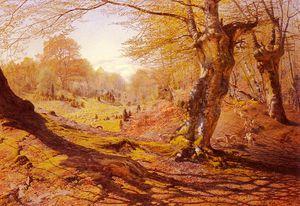 Seasons_In_The_Wood Spring